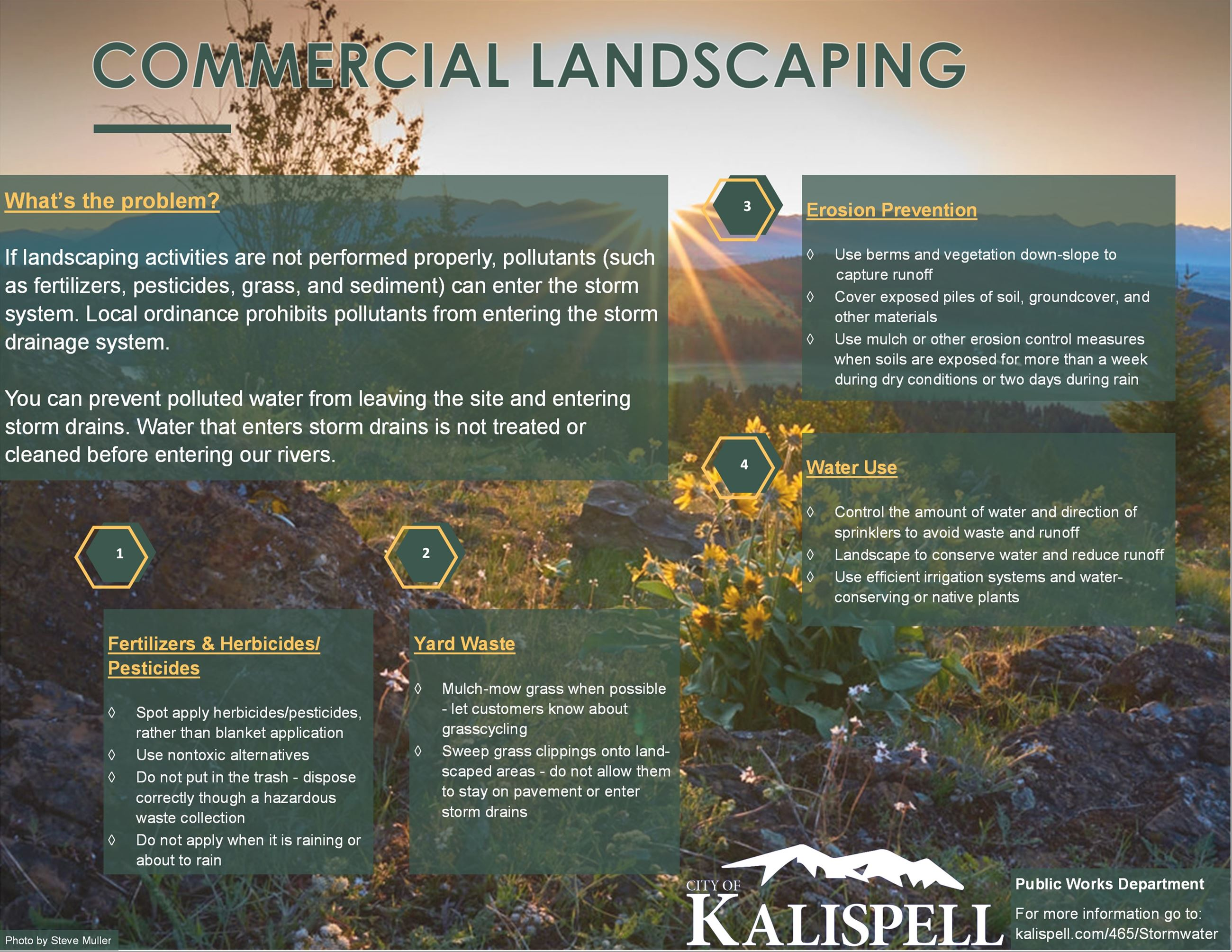 Commercial Landscaping Information and Best Practices