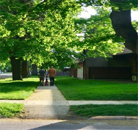 Image of woman, child, man walk down sidewalk with boulevard trees above